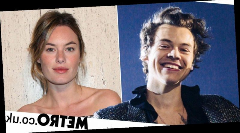 Harry Styles Ex-Girlfriend Camille Rowe Appears on New