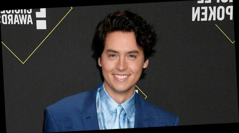 Cole Sprouse Set To Star In Thriller Podcast 'Borrasca'